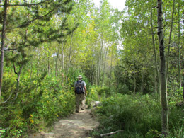 Taggert/Bradly Lake Trail